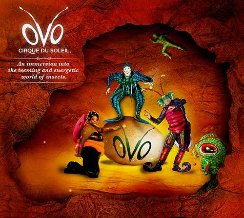 Review of OVO by Cirque du Soleil